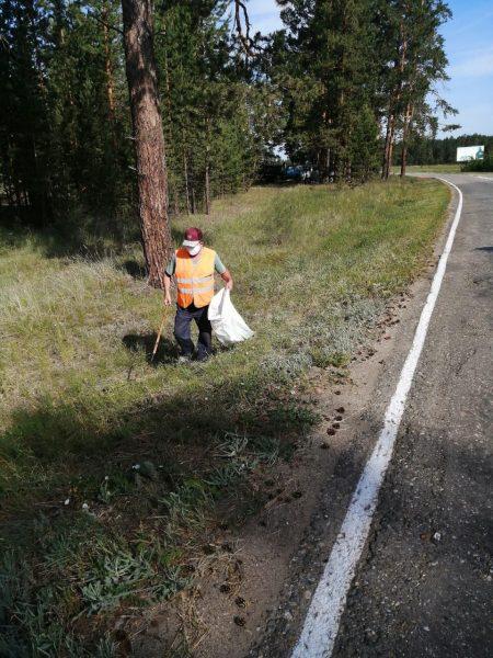 02 Сбор мусора с эл.авт. дороги